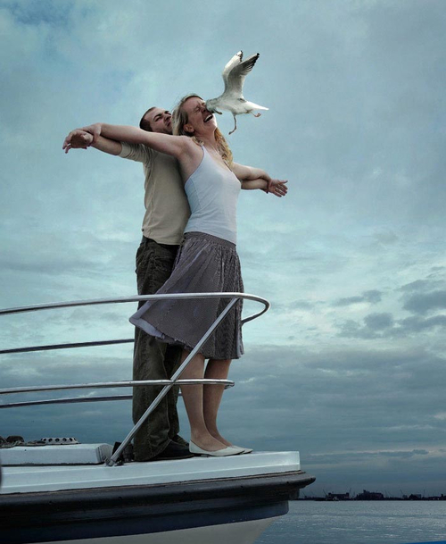 Titanic In Real Life Seagul face fail
